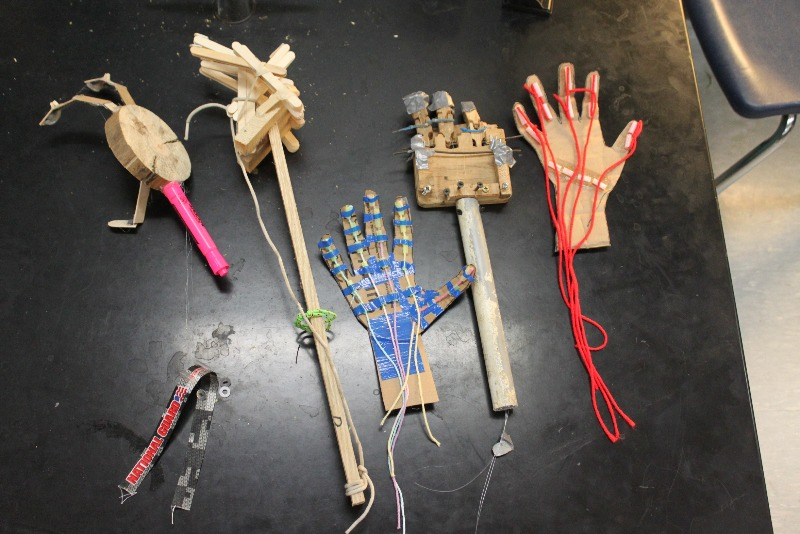 Westwood Csd Prosthetic Limbs Made By Anatomy Physiology Class